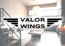 valorwings_cover